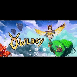 Owlboy Steam CD Key