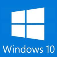 Windows 10 Professional OEM PC CD Key