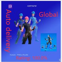 Code | Wildcat 2000VB Global