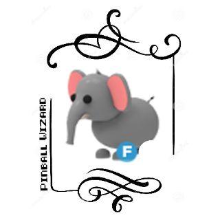 Pet   F Elephant
