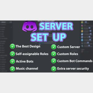I will professionally set up discord server with best design