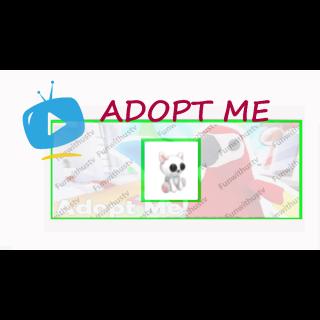 Pet | CAT PLUSH