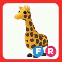 Pet   FR Giraffe Full Grown