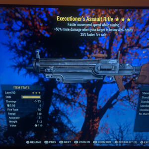 Weapon | Executioners FFR Assault Rifle