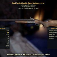 Weapon   QE Double Barrel