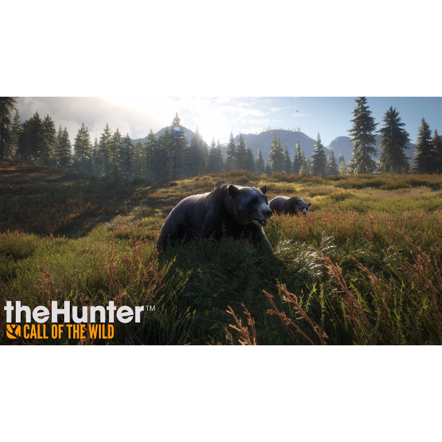 Thehunter Call Of The Wild Steam Games Gameflip