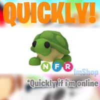 Pet | Turtle NFR