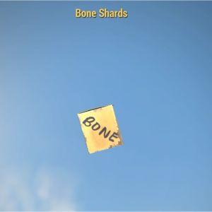Junk | 10,000 Bone Shards