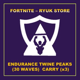 Bundle | CARRY ENDURANCE TWINE x3