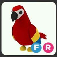 Pet   FR PARROT FG!