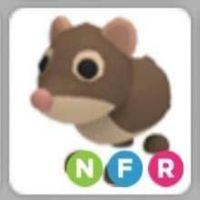 Pet   NFR SHREW REBORN