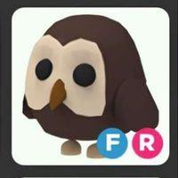 Pet   FR OWL FG!