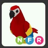 Pet   NFR PARROT SPARKLE