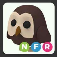 Pet   NFR OWL REBORN