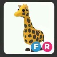 Pet   FR GIRAFFE FG!