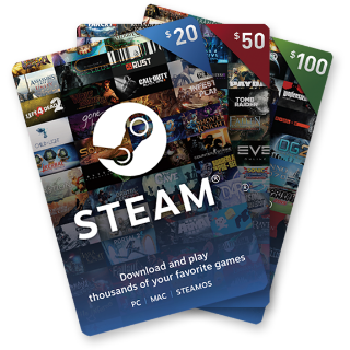 $100.00 Steam