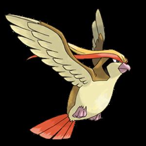 Pidgeot   SHINY LVL 100
