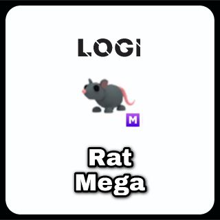 Pet   Rat M