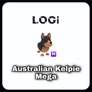 Pet   Australian Kelpie M