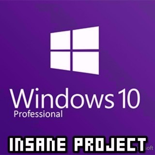 Microsoft Windows 10 Professional (Pro) OEM