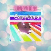 Pet | MFR CAPYBARA