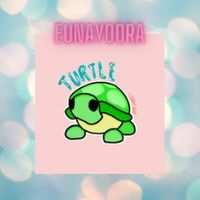 Pet | 10 X R TURTLE (ALL RIDE)