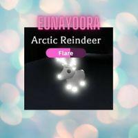 Pet | NFR ARCTIC REINDEER -SUN