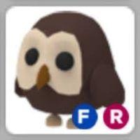 Pet   FR OWL - TEEN
