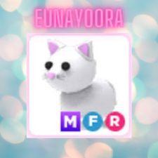 Pet   MFR SNOW CAT