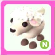 Pet   N LAMB (NOPOT)
