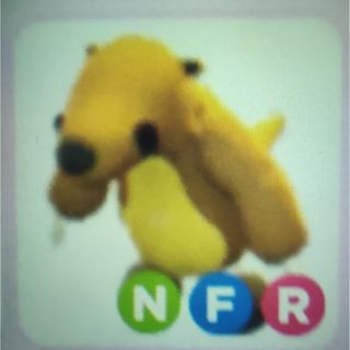 Pet   NFR GROUND SLOTH