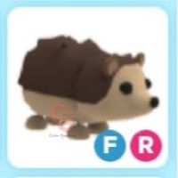 Pet   FR HEDGEDOG - JUNIOR