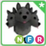 Pet   NFR CERBERUS TWINKLE