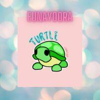 Pet | NFR TURTLE - REBORN
