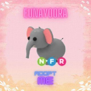 Pet   NFR ELEPHANT LUMI