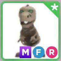 Pet   MFR SKELE-REX