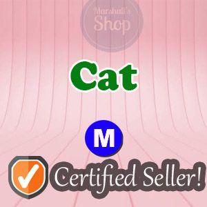 Pet   M Cat