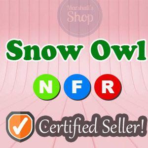 Pet   NFR Snow Owl Sunshine