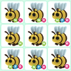 Pet   10x Bee Bundle